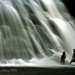 20101208-waterfallsurvivors